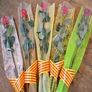 Roses preparadas sant jordi