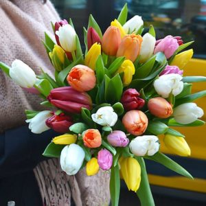 comprar-tulipanes-barcelona