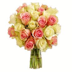 envio rosas san valentin
