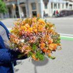 flor-seca-barata