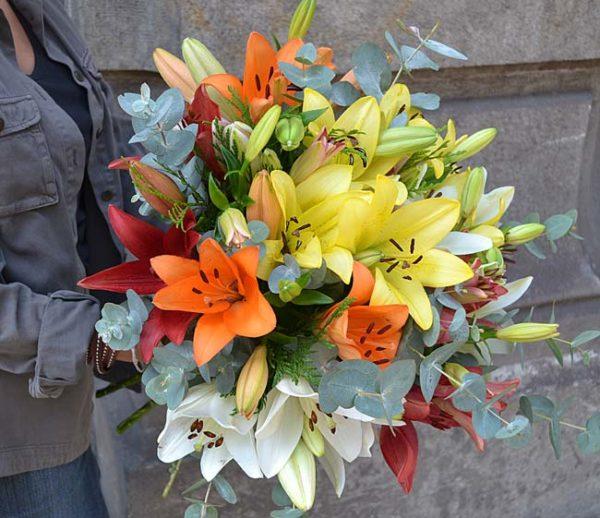 lilliums-variado