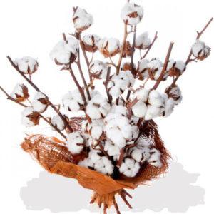 ramo flores algodon barcelona