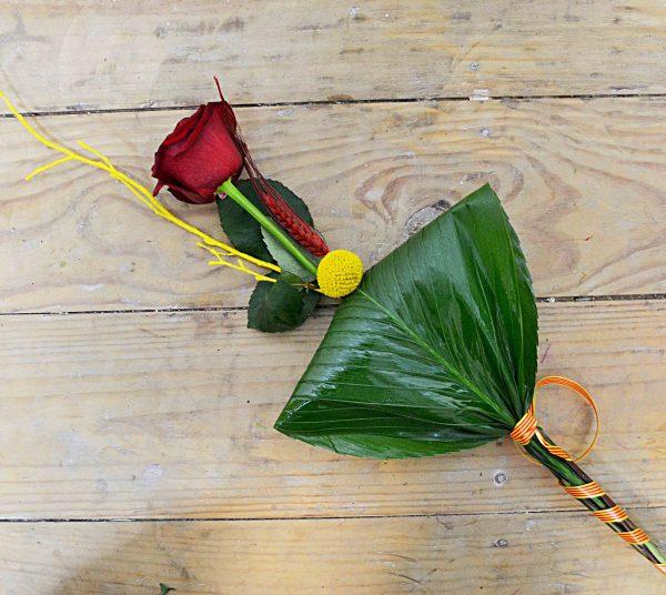 roses domicilio sant jordi