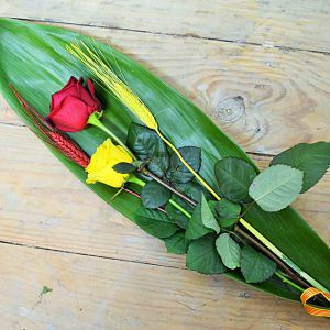 roses-sant-jordi