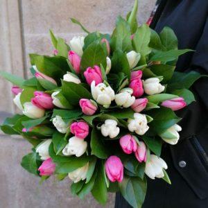 tulipanes-pastel-barcelona