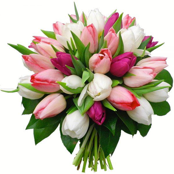 tulipanes ramo barcelona