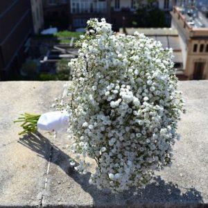 ramo-novia-paniculata