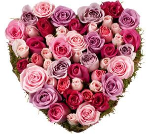 rosas envios san valentín