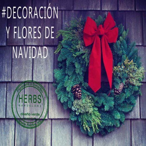 flores-para-la-navidad