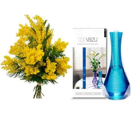 mimosa-con-jarron