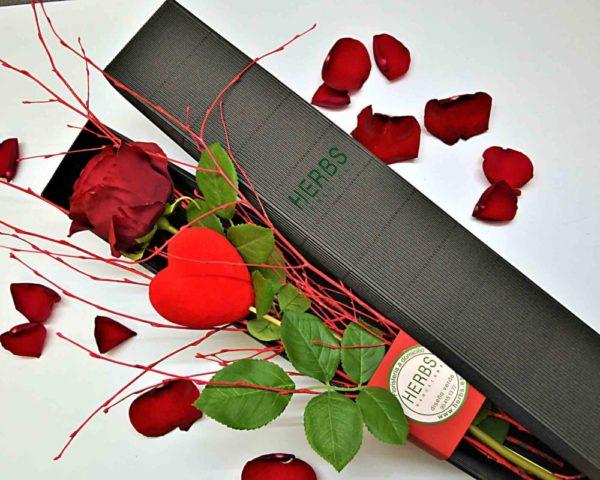 rosa-para-san-valentin