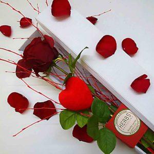 rosa-san-valentin