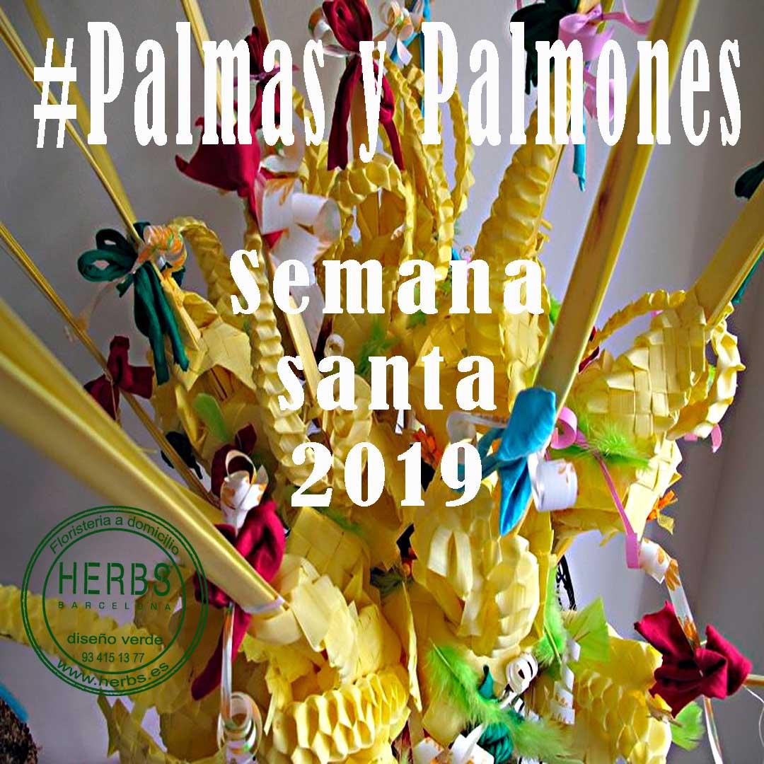 palmas-barcelona