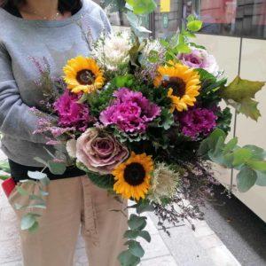 flores-coles-girasoles