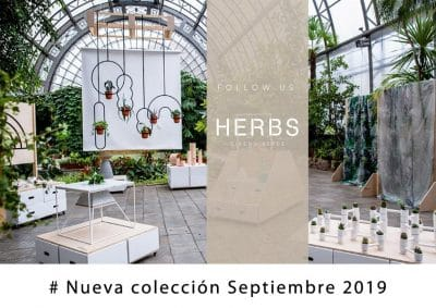 plantas-interior-barcelona