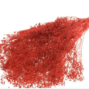 broom-red