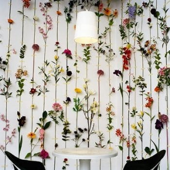 pared flores secas