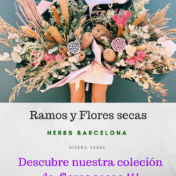 flores secas barcelona
