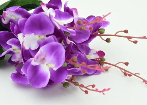 Ramo De Novia de orquídea