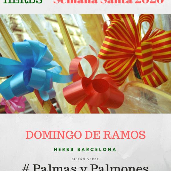 palmas-palmones-barcelona