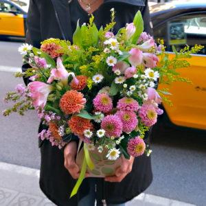 flores-silvestres-box