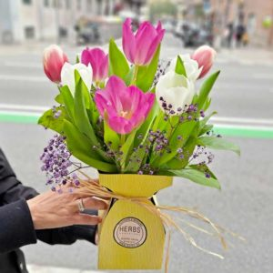 tulipanes-en-barcelona