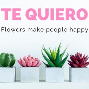 tarjeta-te-quiero-cactus